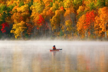 Fall leaves around a lake with boater in fog